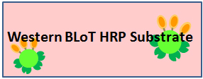 Western BLoT HRP Substrateシリーズ