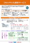 DNAメチル化解析サービス