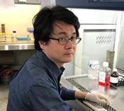 肝疾患モデル作製の研究
